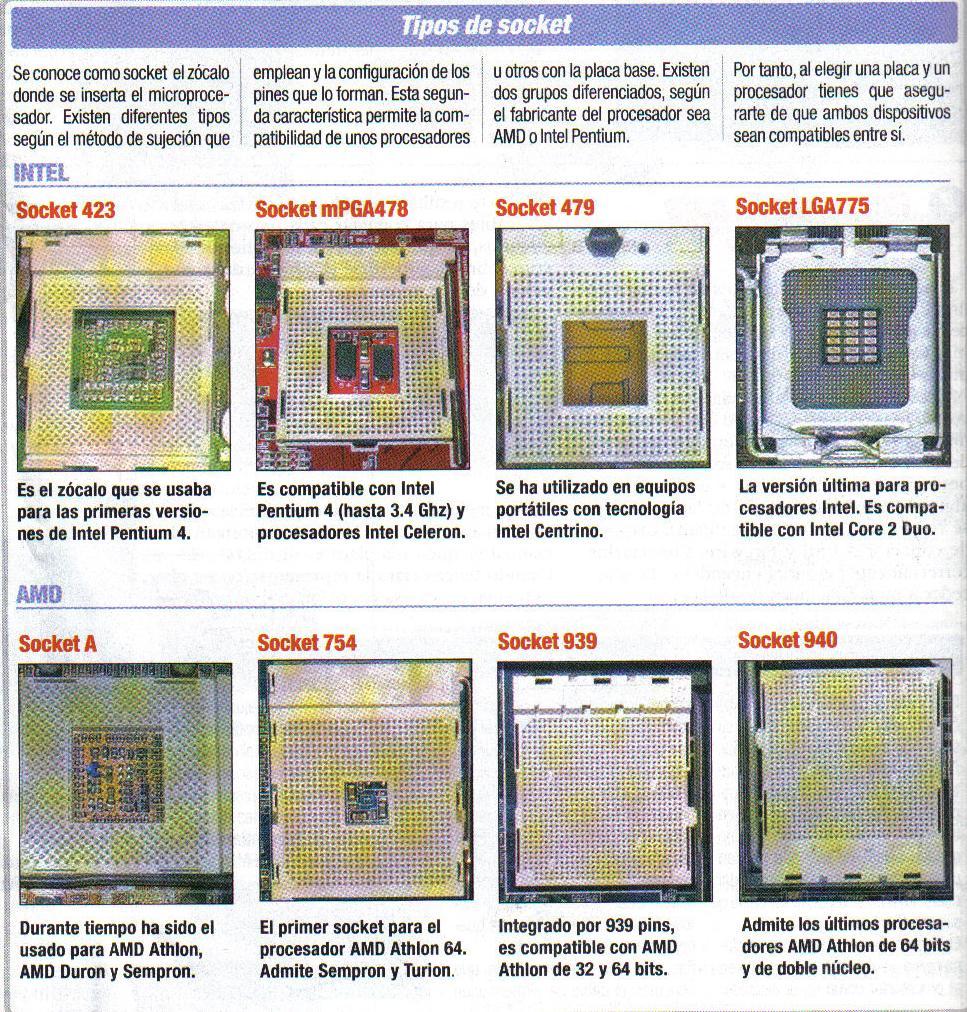 Tipos de sockets for Tipos de zocalos