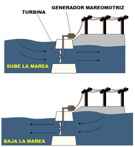 Energia Mareomotriz. Generador, Central Mareomotriz y Tipos