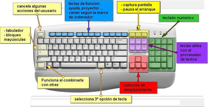 Teclado del Ordenador Tipos y Sus Partes